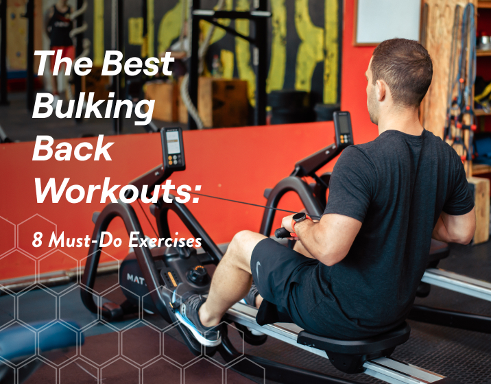 the best bulking back workouts